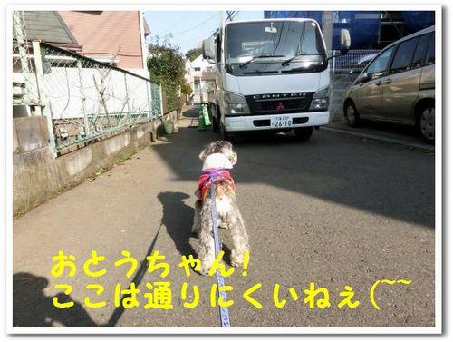 2.CIMG8770.jpg