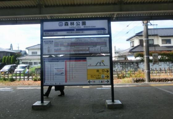 4.JPG_4462.jpg