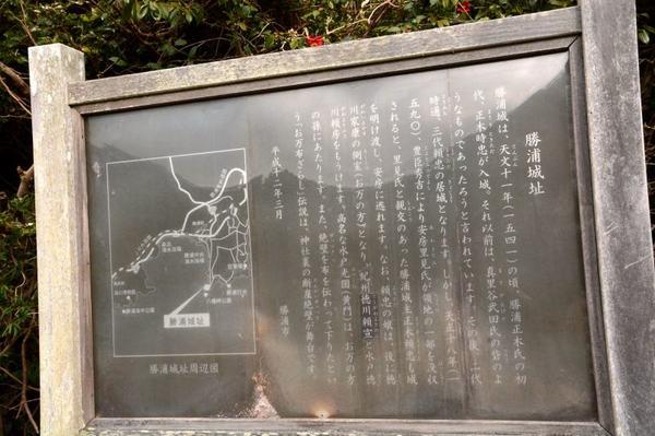 6.JPG_1897(勝浦城址).jpg