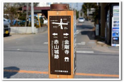 8.JPG_5276.jpg