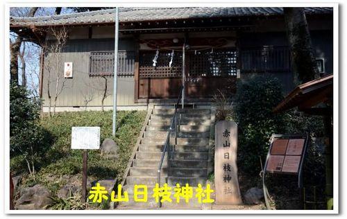9.JPG_5281.jpg
