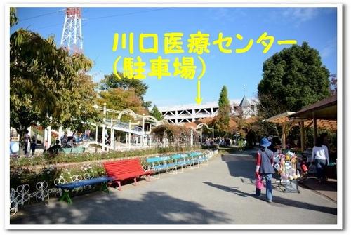 JPG_0493.jpg