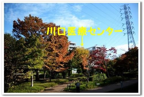 JPG_0495.jpg