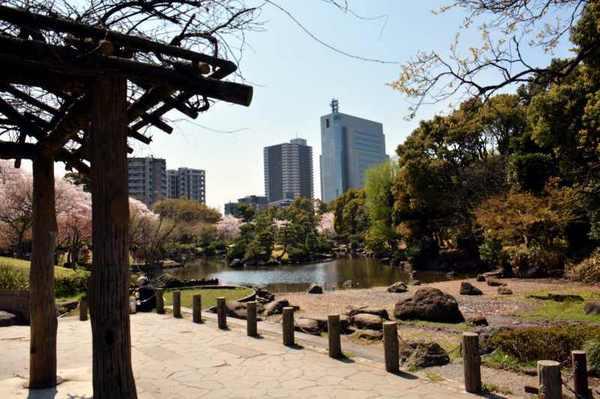 JPG_3539(隅田公園).jpg