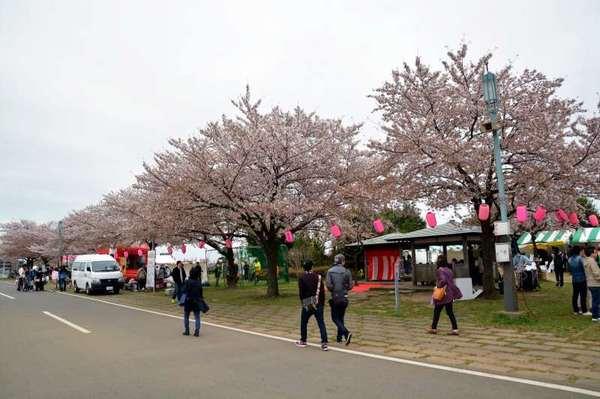 JPG_3742(柴又公園).jpg