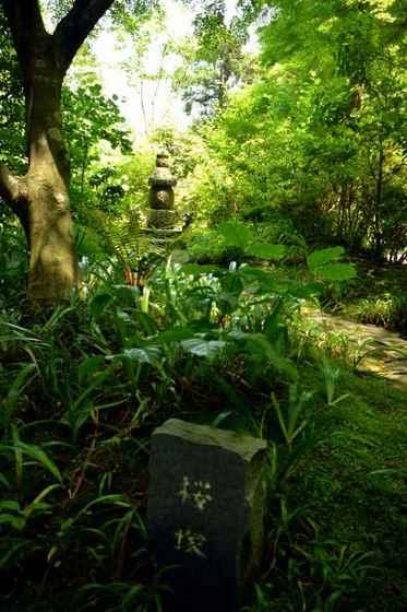 JPG_4604(女性のための永代供養塔(共同墓)「桜塚」).jpg