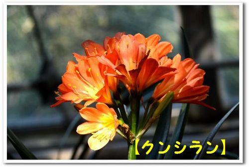 JPG_5340.jpg