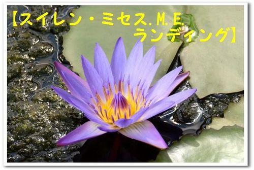JPG_5350.jpg